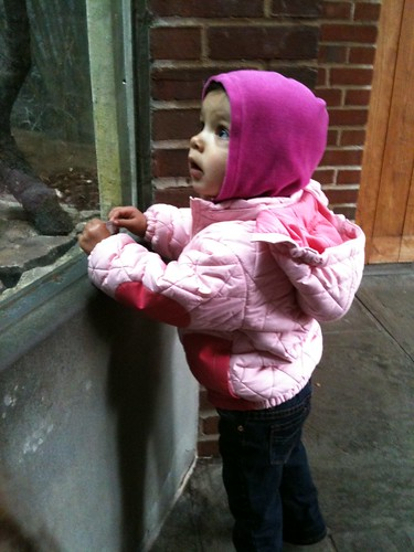 Laila at the zoo