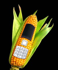 I need no iPhone - I have a Maize-Phone! (Eisgrfin (very busy)) Tags: yellow telphone onblck mygearandme maizegreen telefonmaisgrngelbhannovergermanyeisgrfin