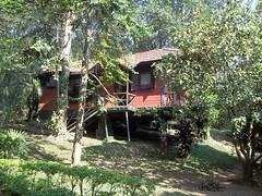 100_0167 (travellersai) Tags: kerala treehouse wayanad teaestate wildboar bandipur chital vythri banasuradam soojiparafalls streamvalleyresorts