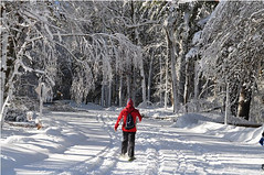 Running while snowshoeing