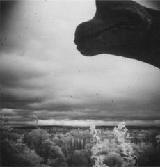 Dino Over Plzen (synikat) Tags: dinosaur toycamera diana czechrepublic plzen dinopark blackandwhiteinfraredfilm