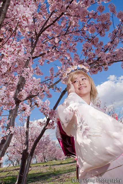 Sakura2011_0851