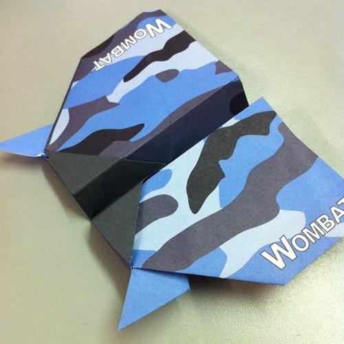 Wombat, 22.02.11
