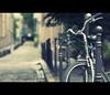corpado (millan p. rible) Tags: street cinema paris france canon movie still cinematic 135l canonef135mmf2lusm canoneos5dmarkii 5d2 corpado