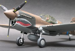 "P-40E Warhawk AVG ""The Flying Tigers"" (dm.miniatures) Tags: fighter aircraft wwii worldwarii pursuit curtis hasegawa scalemodel modelkit p40 warhawk usaaf 148 p40e comissionedwork aircraftscalemodel curtisswarhawk militaryscalemodel"