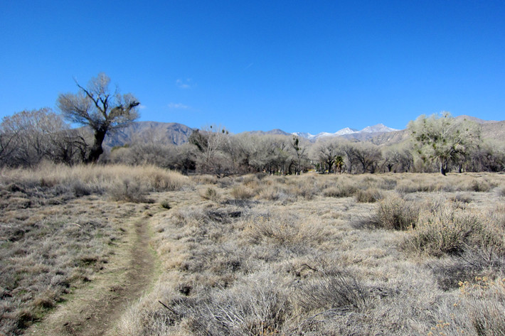 022411_MorongoCanyon02