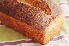 whole wheat bread - bread making machines