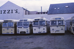 Paton Tiger Cubs at Renfrew Depot (Guy Arab UF) Tags: bus buses scotland renfrew paton leylandtigercub eastmidland trentbuses wxr51 birchbros nrc161 nrc153 yal366