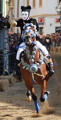 verso la stella (Marcello Trois) Tags: sardegna stella nikon sardinia colori cavalli oristano sartiglia tradizione marcellotrois