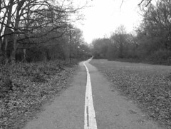 Earlswood Path
