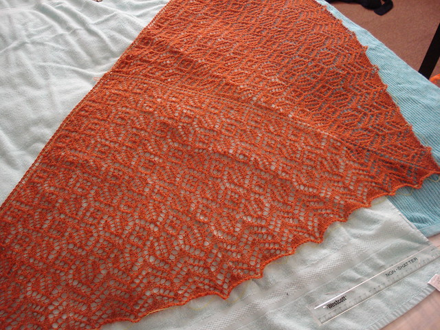 Bison tracks Isager alpaca shawl Heartland Lace handknit shoulder shawl