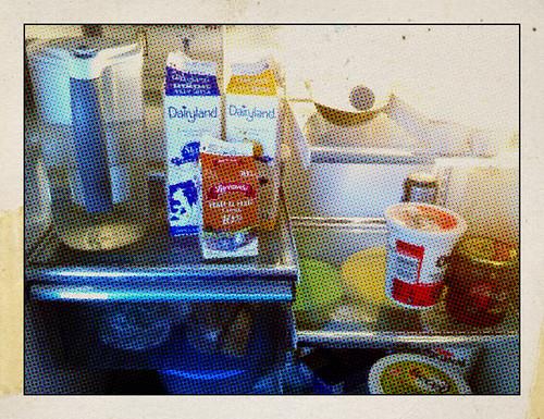 inside our refrigerator