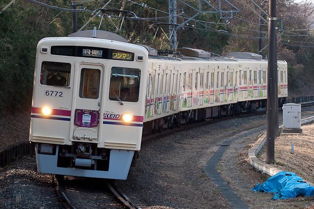京王電鉄 ありがとう6000系HM 赤