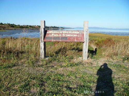 coastal cleanup 020