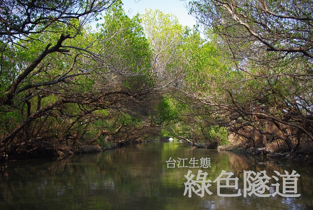 台南 -- 四草大眾廟 + 台江生態
