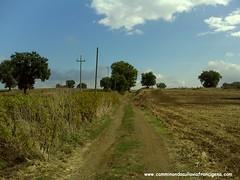 VersoCampagnano5