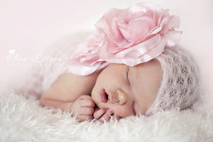 Angel (Elena (Litsova) Sigtryggsson) Tags: pink portrait baby flower girl face angel wrap newborn asleep 1weekold