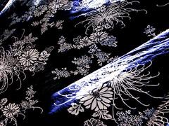 Japanese bathrobes in the wind (Ani Carrington) Tags: japanese laundry japanesedesign