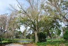 080222-001 Country Club of Orlando (WashuOtaku) Tags: golf orlando florida nikond80 countrycluboforlando