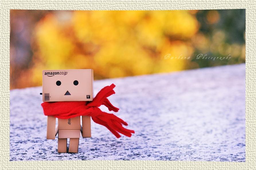 danbolove-92cornblog