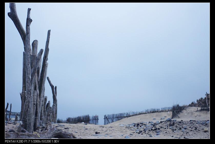 2011/03/19 Pentax-F 50mm f1.7 老梅!