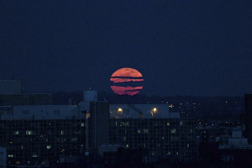 Super Moon Rising Over the Bronx