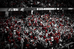 osu (Albinoux) Tags: ohio red basketball scarlet grey march state crowd arena tournament madness osu bball ncaa diebler