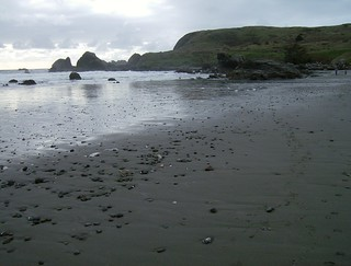 Oregon Coast - Brookings, Oregon 039