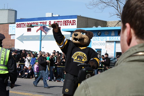 boston bruins bear signs. Boston Bruins bear.