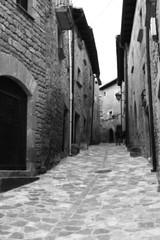Perdindonos (KARNATION) Tags: espaa calle peace paz medieval zaragoza aragon pace sosdelreycatolico karnation