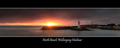 North Beach Wollongong Harbour (Alex Gunawan) Tags: bestcapturesaoi selectbestexcellence