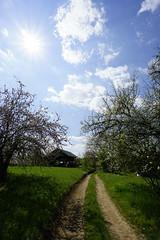 _DSC6462 (Nonesmanneslond) Tags: slovenia slovene kitnivhr