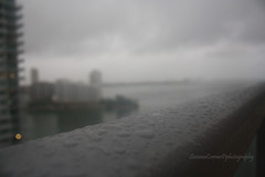 Matthew (Simo_SCRIC_Corrao Eagle Eye79) Tags: hurricane storm tempesta uragano hurricanematthew uraganomatthew miami