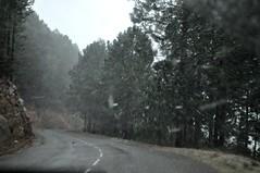 Route de montée à Bavella : chute de neige sous Bocca di Larone