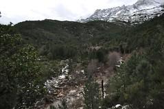 Ruisseau de Sainte-Lucie depuis la piste de Mela