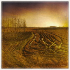 Tracks (joe00064) Tags: beautiful interesting tracks most fields 500 campi mostbeautiful infinestyle platinumheartaward joe00064 mygearandme mygearandmepremium mygearandmebronze mygearandmesilver mygearandmegold mygearandmeplatinum mygearandmediamond