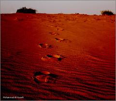 R7eEeL . . ! (Mohammad Al-Yousefi) Tags: