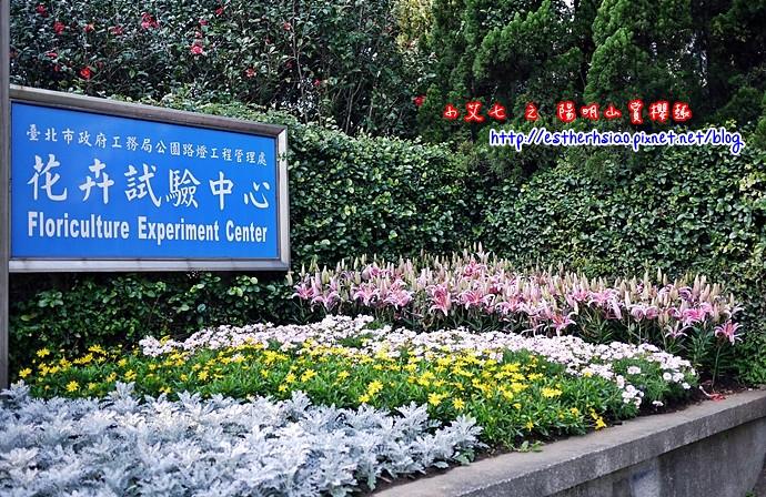 15 花卉試驗中心