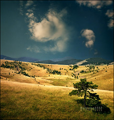 Pick a place for yourself - Zlatibor inspired.. :))) (Katarina 2353) Tags: life wood travel autumn trees sunset summer vacation sky mountains green art fall film nature beautiful field yellow clouds forest landscape