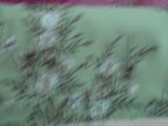 DSC06039 (qordlowiy) Tags: motif shalat kerudung perlengkapanalat