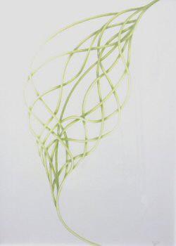 Dessin au crayon reprenant la forme d'un pétale de bourrache avec une structure en labyrinthe dans les tons verts de dimensions 56x76cm – Sandrine Vallée