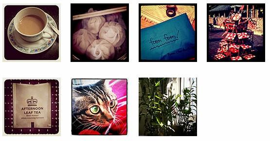 lazylife instagram