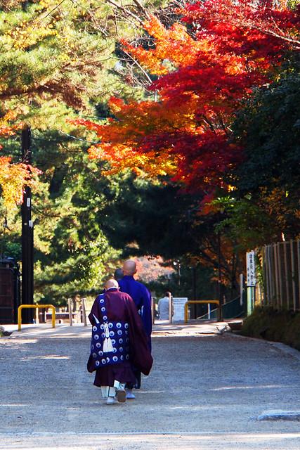 20101116_095348_興福寺