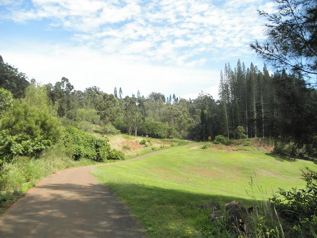 Koloiki Trail near Experience at Koele