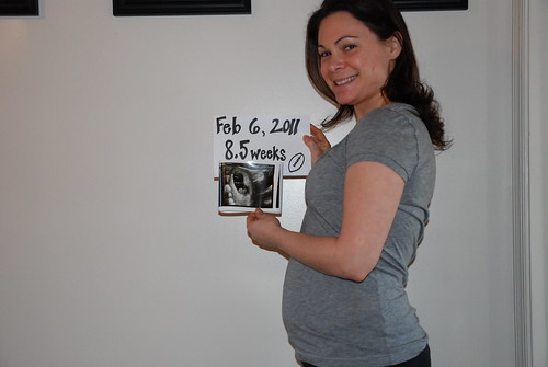 8.5 weeks