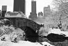 Bridge in Central Park, New York (chrisgault) Tags: park new bridge trees winter snow ny ice water grass central manhatten royk