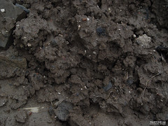 TAKETONE_GROUND_0048 (Game Texture Images) Tags: mud ground driedmud groundtexture gametexture mudtexture