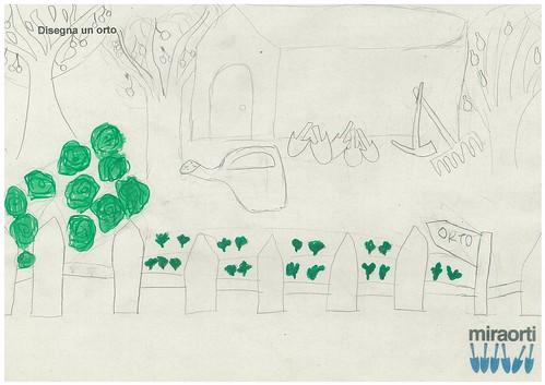 Disegna un orto 5A 6