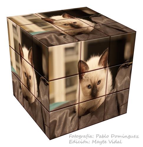 Bruma Heidi Rubik's play