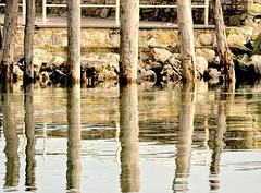 Una foto  un riflesso pi o meno diretto, e pi o meno contorto (rorri1982) Tags: wood lake water reflections lago nikon rocks f45 mm capture pali acqua riflessi vr trasimeno legno scogli 55200 nx d3000 flickraward rorri1982